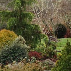 cropped-gardenservicescuckfield.jpg