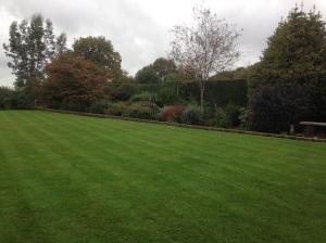Garden maintence Cuckfield