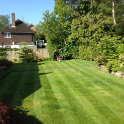 Grass cutting Haywards Heath