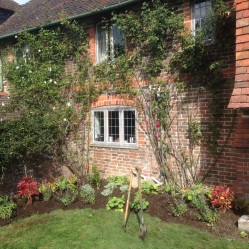 Garden design Cuckfield